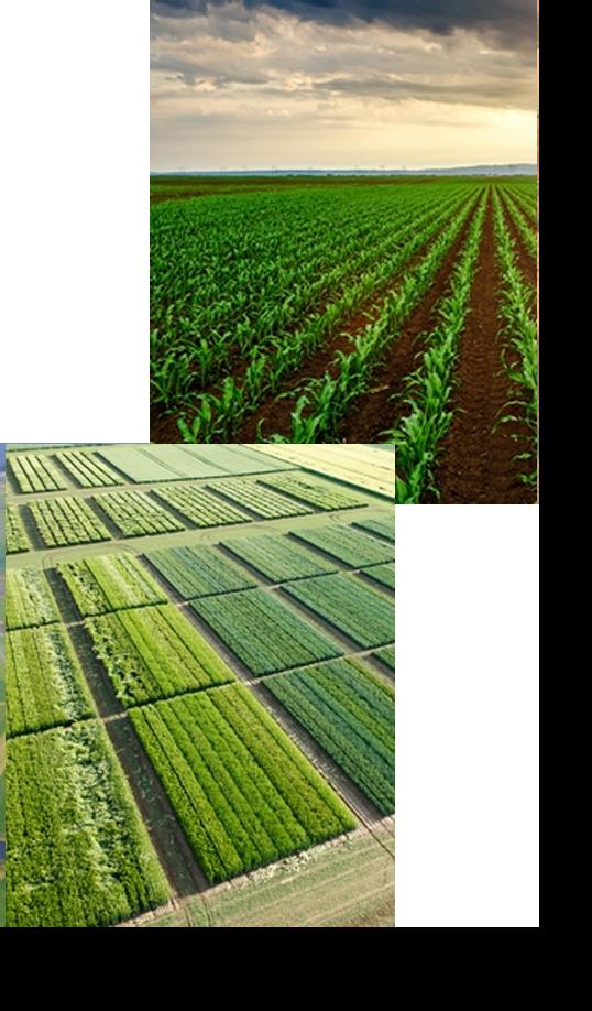 latitude-gps-precision-planting